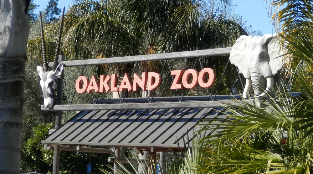 oakland zoos newest addition - 1000×555