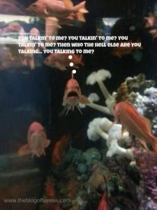 talking to me fish