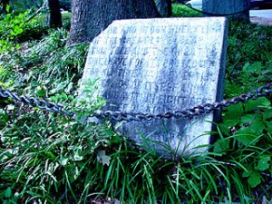 Plaque at the site, weathered by exposure. The stone faintly details a passage from William H. Jackson's deed to the tree.